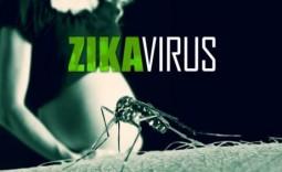 Phòng tránh bệnh do vi-rút Zika: Phụ nữ mang thai cần ghi nhớ